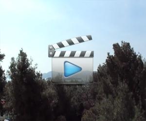 Iznajmljivanje Apartmana Udovičić - Biograd - Sv. Filip i Jakov - Film 8